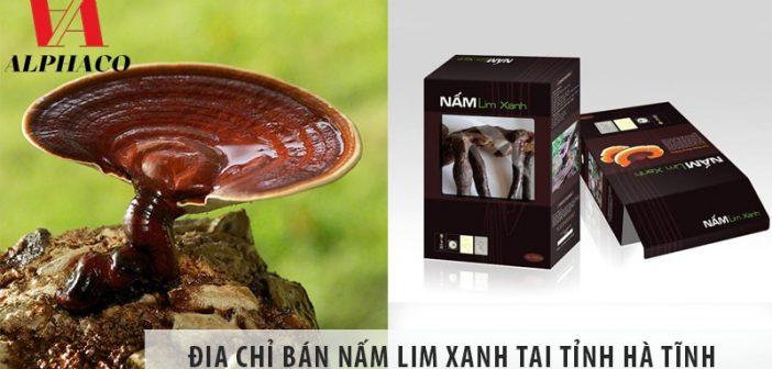Địa chỉ bán nấm lim xanh tại tỉnh Hà Tĩnh uy tín, giá tốt